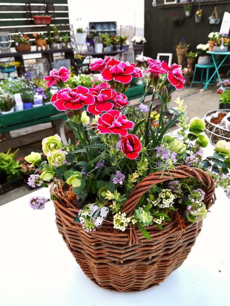 ダイアンサス籠ギャザリング-フルーレ fleur-é