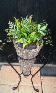 観葉植物のギャザリング足付きプランター- fleur-éフルーレ