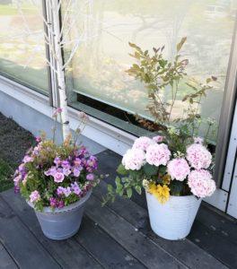 玄関前に飾る鉢植え-フルーレ
