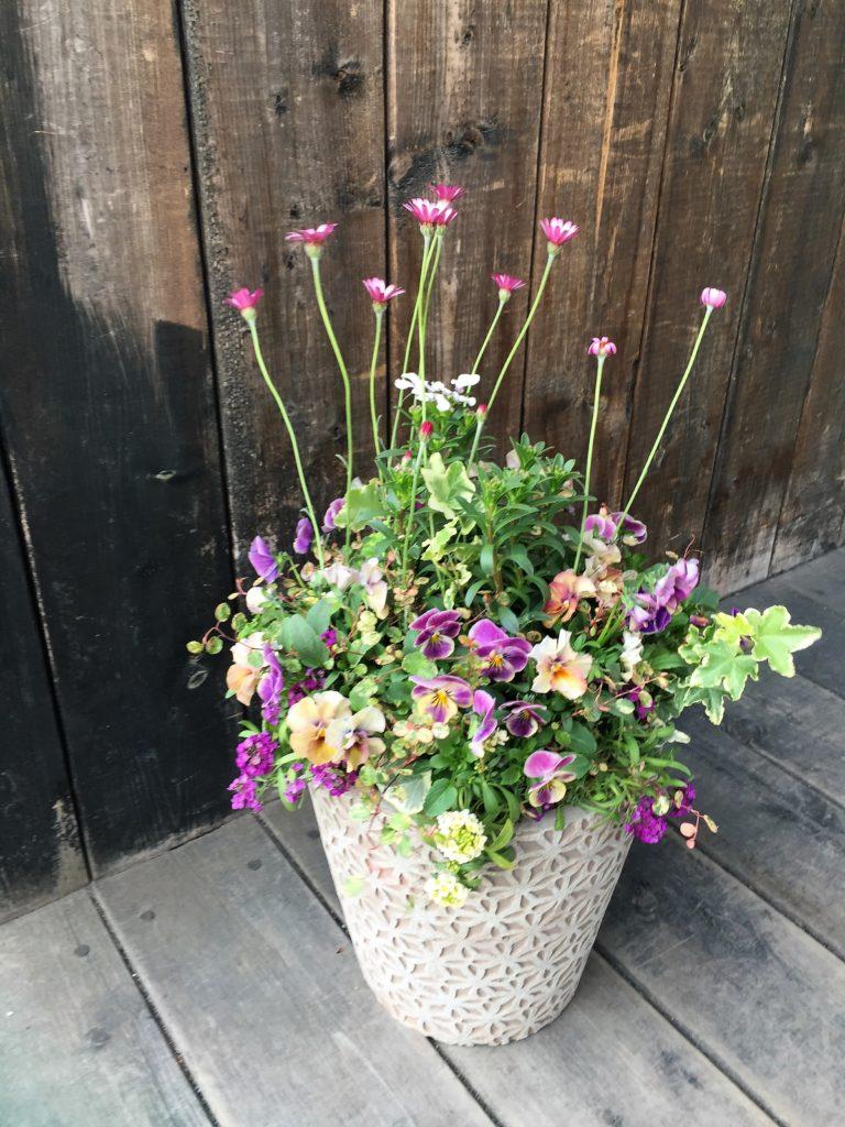 玄関鉢植えギャザリング-フルーレ fleur-é