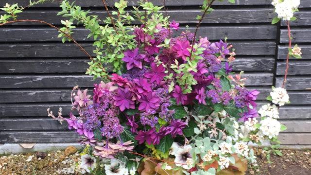 紫陽花とコデマリプランター-フルーレ