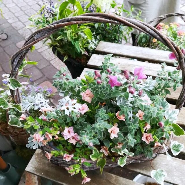 札幌花フェスタギャザリング‐フルーレ