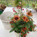 秋の寄せ植え‐fleur-e.com