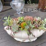 多肉植物寄せ植え体験-フルーレfleur-é
