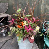 秋の寄せ植え-fleur-e.com