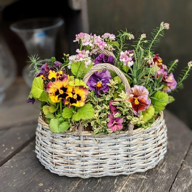 春の寄せ植え-フルーレfleur-é