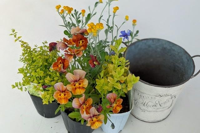 寄せ植え花材-フルーレfleur-é